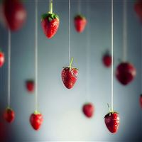 Strawberries Art iPad Air wallpaper