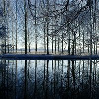 Reflection Kromme Rijn River iPad Air wallpaper