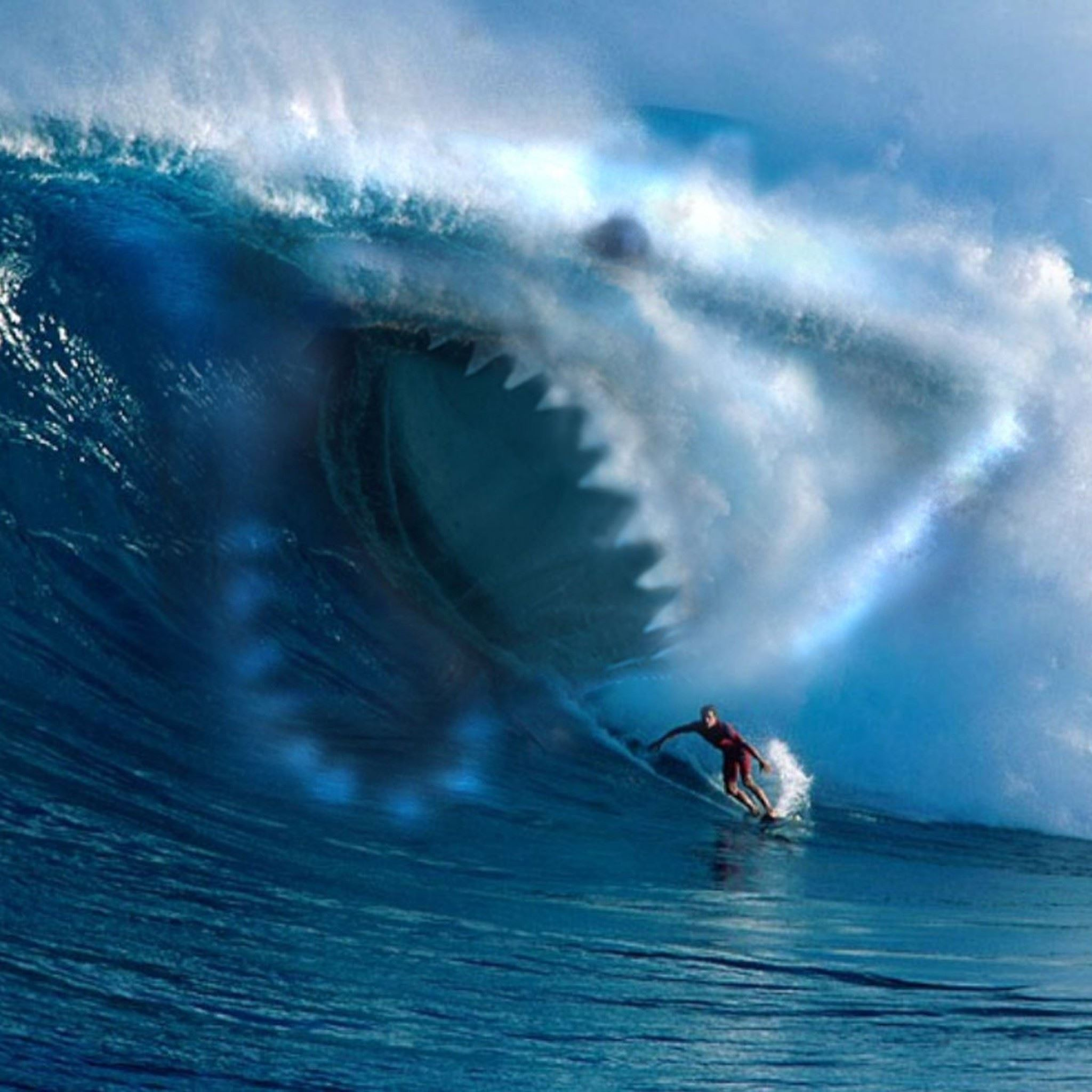 shark wave water surfing ocean ipad air wallpaper download | iphone