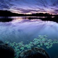 Wonderful Lake Landscape iPad Air wallpaper