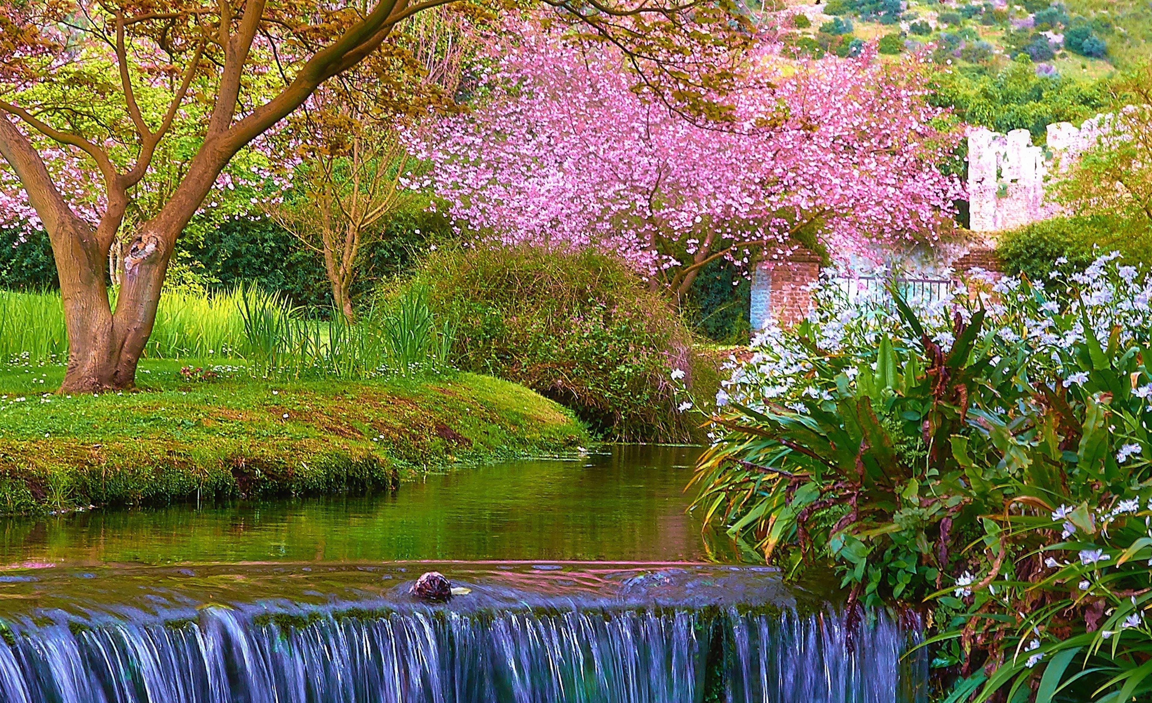 Nature Spring Scene iPad Air Wallpaper Download   iPhone ...