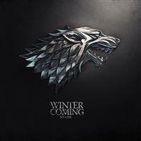 Thrones Winter Is Coming iPad Air wallpaper