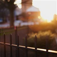 Morning Sunshine City House Garden iPad Air wallpaper