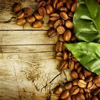 Coffee Bean Wooden Leaf Wooden iPad Air wallpaper