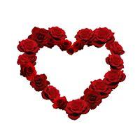 Rose Love Heart iPad Air wallpaper