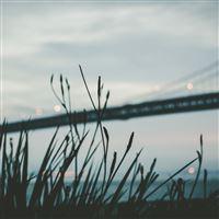 Bridge Morning River Bokeh iPad Air wallpaper