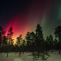 Snow Sky Aurora Night Winter Christmas iPad Air wallpaper