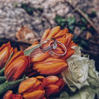 Tulips Rings Flowers Romance Wedding iPad wallpaper