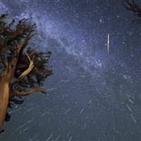 Meteors Perseids Bristlecone Meteor Shower iPad wallpaper