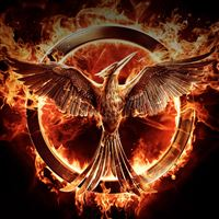 Hunger Games Fire iPad wallpaper