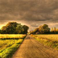 Autumn Field Road Landscape iPad wallpaper