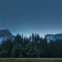 Trees Forest Mountains USA California Yosemite Valley National Park iPad wallpaper