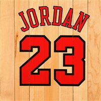 Michael Jordan Chicago Bulls Number Name NBA Basketball Boards iPad Air wallpaper