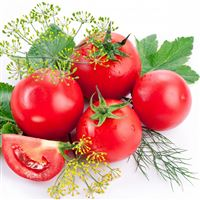 Tomatoes Branch Ripe iPad Air wallpaper