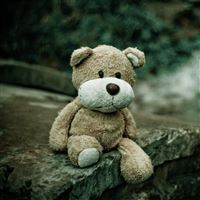 Soft Toy Teddy Bear iPad Air wallpaper