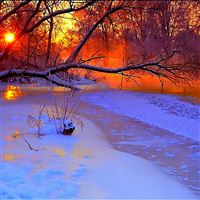 Winter sunset evening iPad Air wallpaper