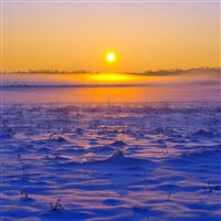 Field horizon snow grass sunset iPad wallpaper