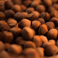 Hazelnuts iPad Air wallpaper
