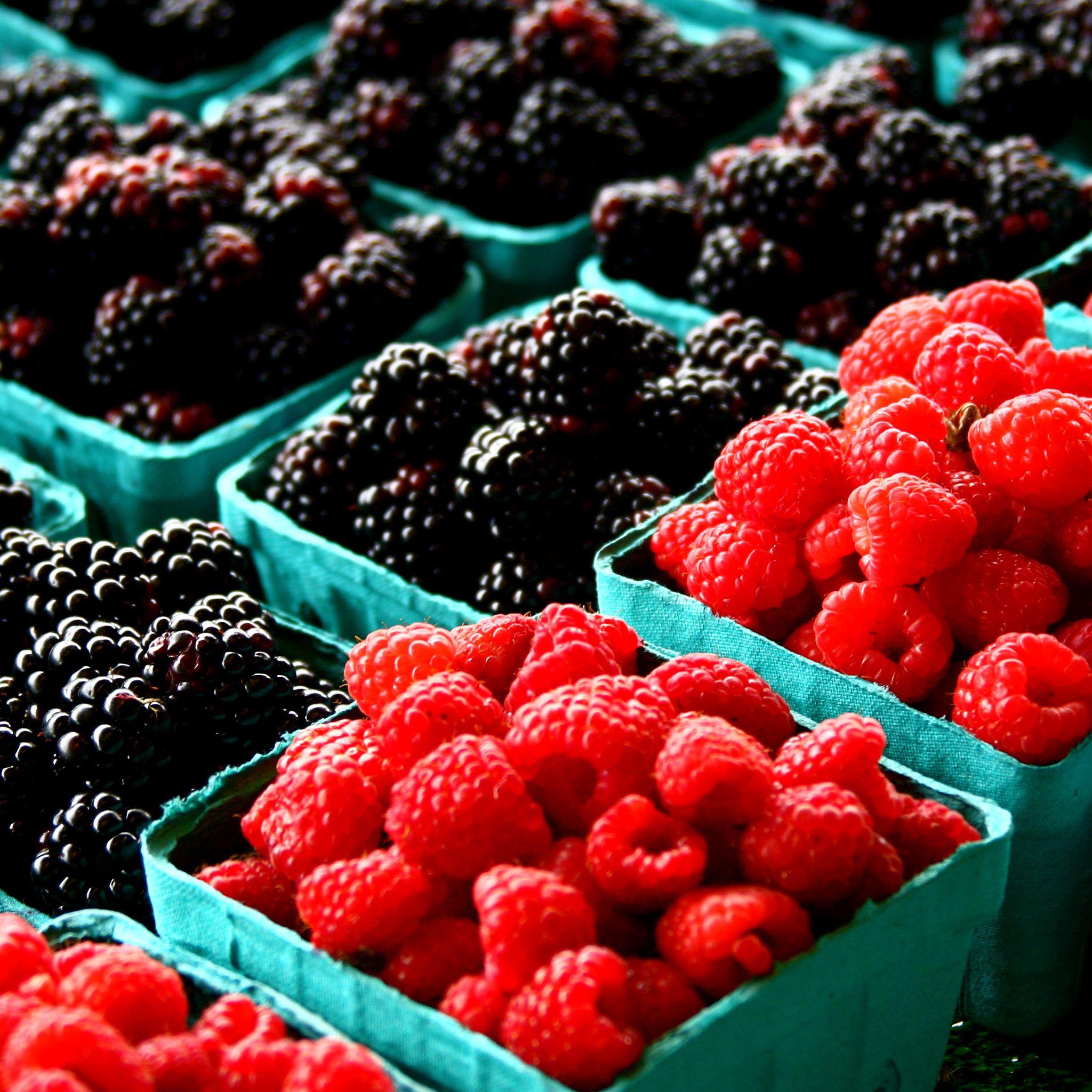 red black berries iPad Air wallpaper