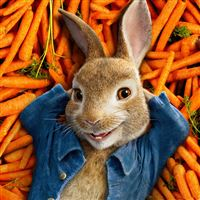 Peter rabbit movie iPad wallpaper