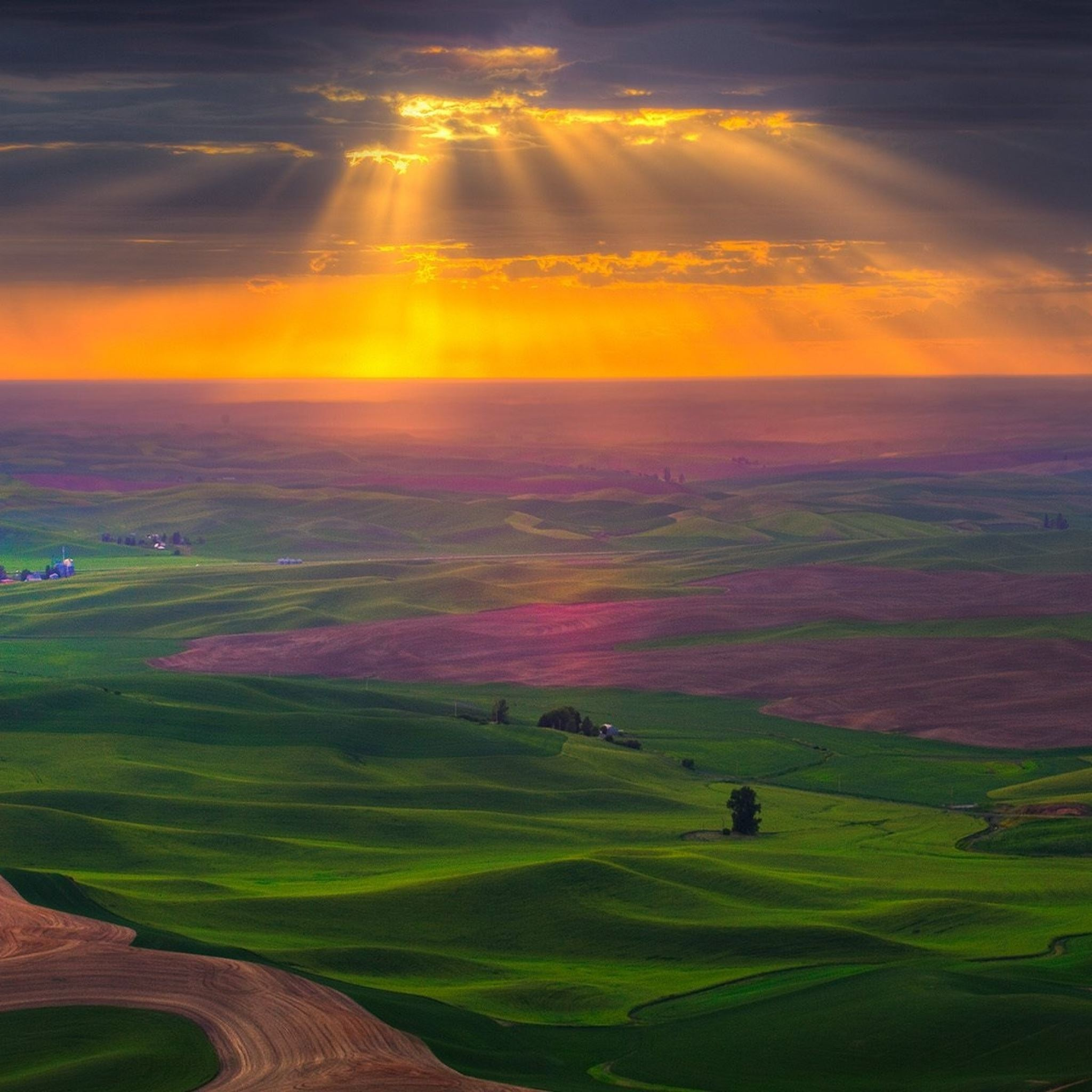 Plain road fields greens sky sun light clouds iPad Air wallpaper