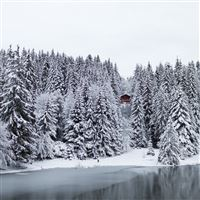 Small Lake in Switzerland iPad wallpaper