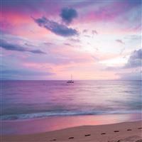 Blissful Paradise iPad Air wallpaper