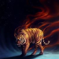 The Tiger iPad wallpaper