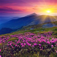 Sun Shining Over Hills iPad Air wallpaper