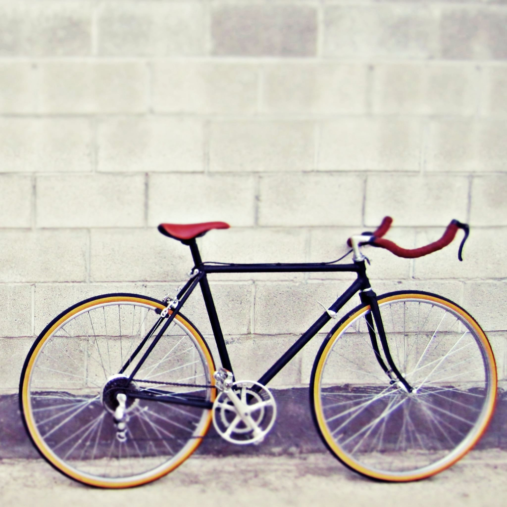 Bicycle 2 iPad Air wallpaper