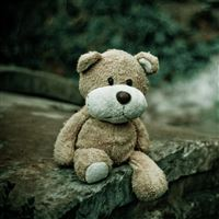 Soft Toy Teddy Bear iPad wallpaper