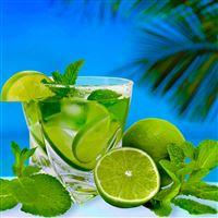 Lime Cocktail Mint Glass iPad Pro wallpaper
