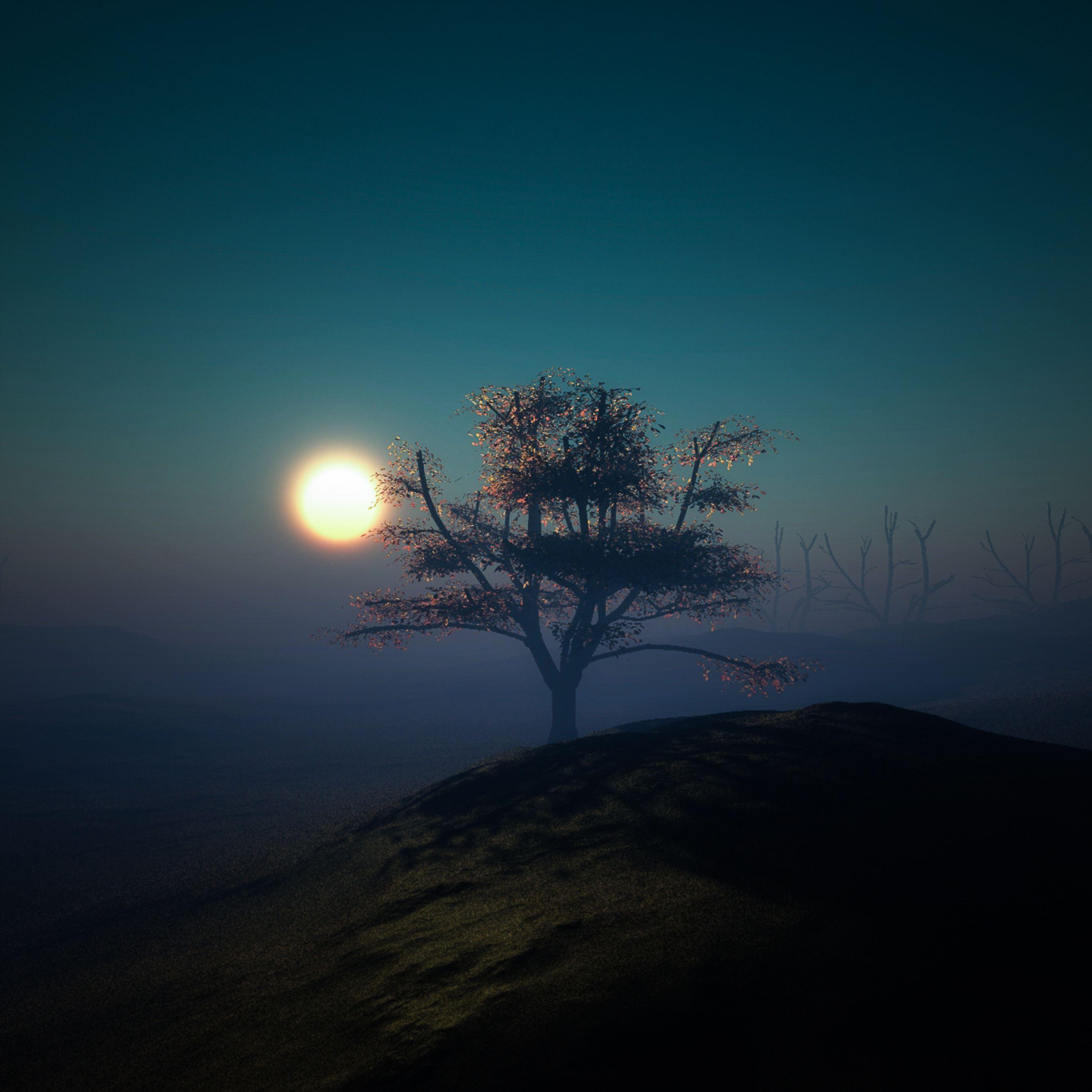 Tree sunset night lights hill iPad Pro wallpaper