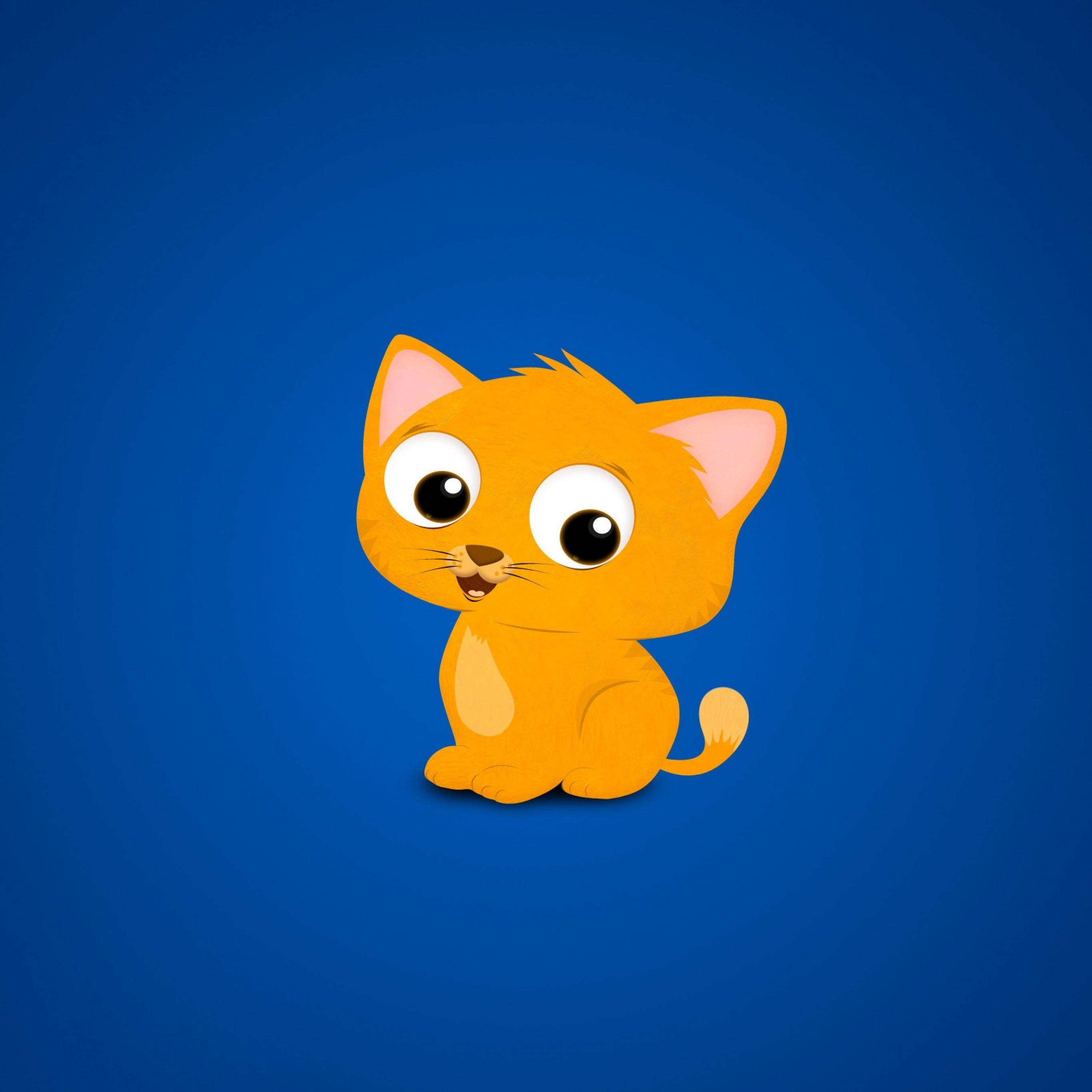 Cat kitten picture red blue iPad Pro wallpaper