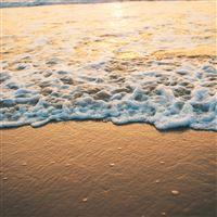 Beach gold sea iPad wallpaper