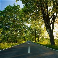 Beautiful Road iPad wallpaper