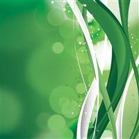 Green Swirls iPad wallpaper