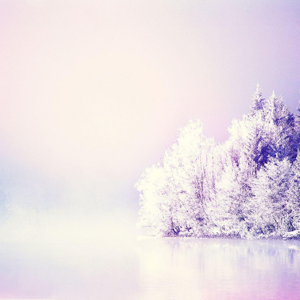 Dreamy Snowy Forest IPad Wallpaper