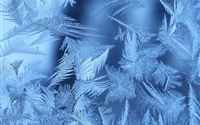 Frosty Blue Snowflake Patterns Art iPad wallpaper
