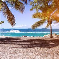 Summer Vacation Ocean Sea Nature Beach iPad wallpaper