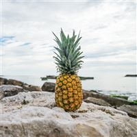 Pineapple Rocks Beach iPad wallpaper