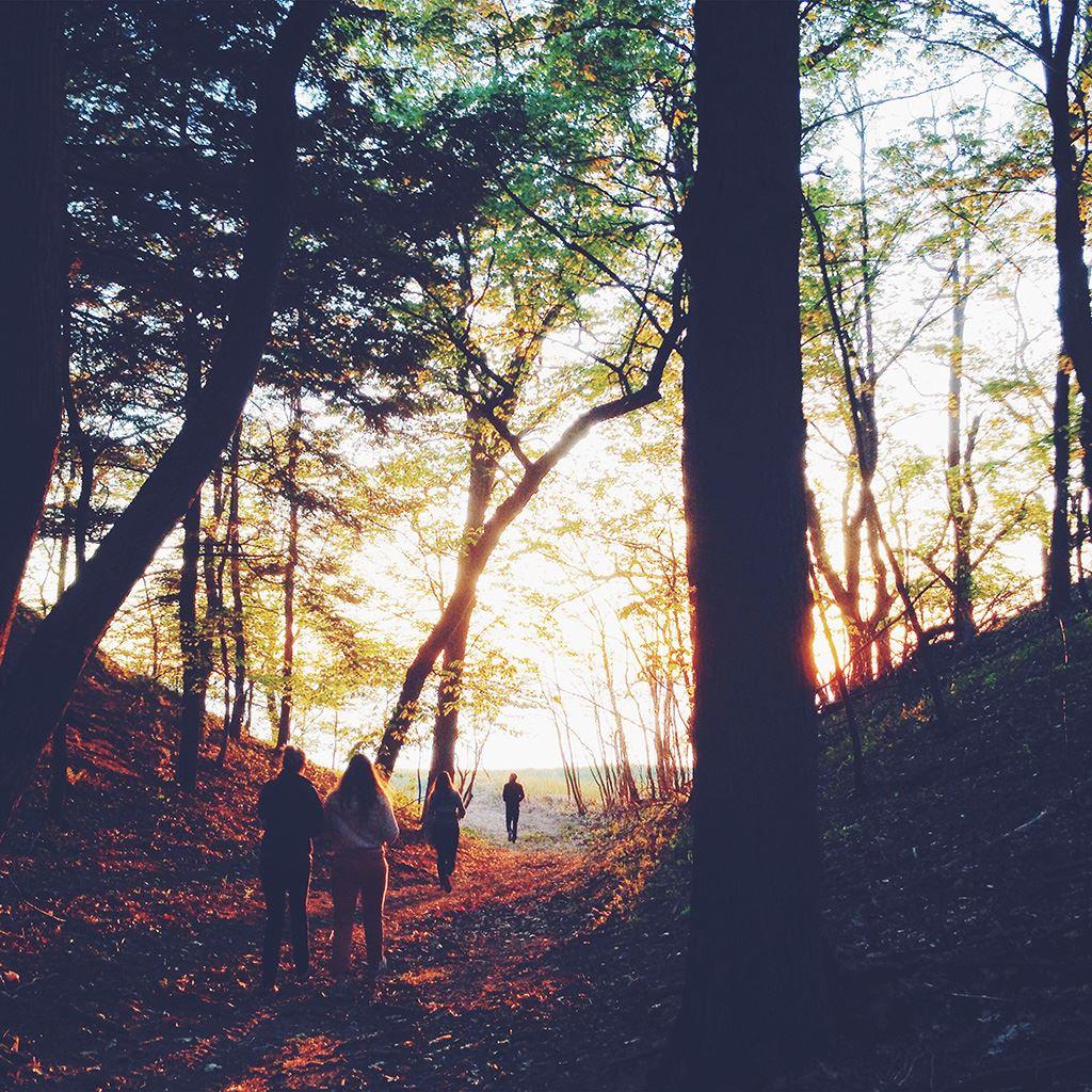 Hiking Mountain Wood Sunset Nature iPad wallpaper