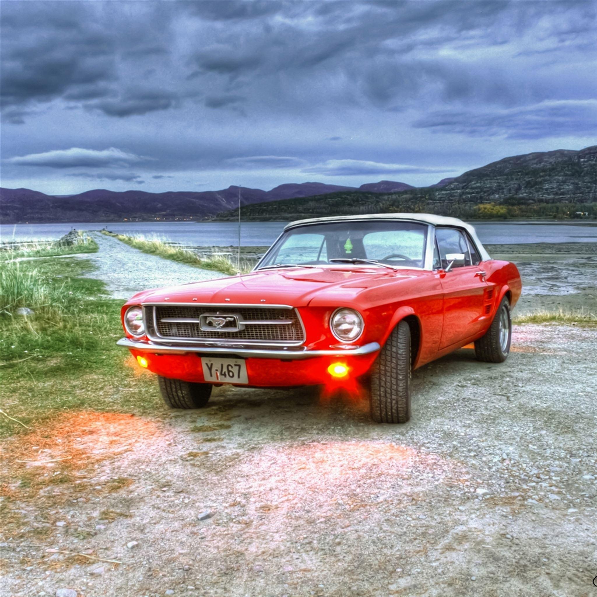 Ford Mustang Wild Landscape iPad wallpaper