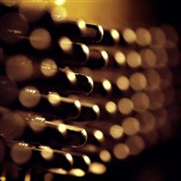 Wine cellar light and shadow iPad wallpaper