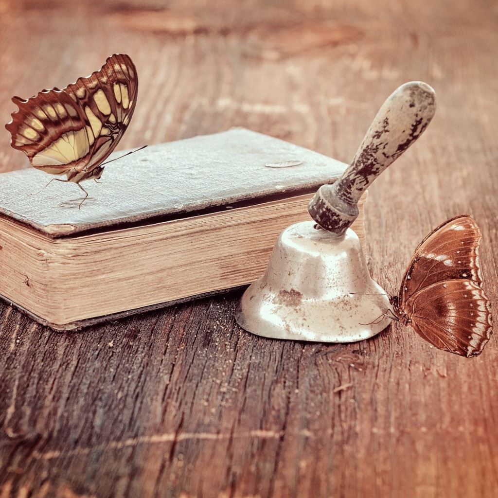 Book and butterflies iPad wallpaper