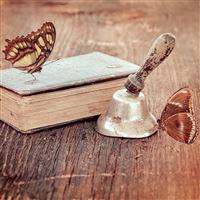 Book and butterflies iPad wallpaper