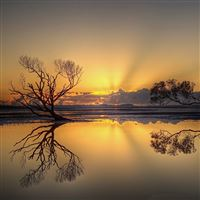 Beautiful sunset iPad wallpaper