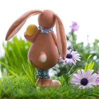 Easter bunny eggs grass iPad wallpaper
