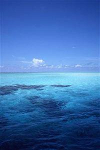 Blue sea iPhone 4s wallpaper