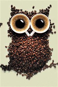 Coffee Owl iPhone 4s wallpaper